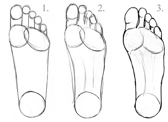 Learn to draw feet